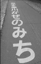 雫石明男課長(府中市・水と緑 事業本部公園緑地課)は、市民からの苦情が続くうえに、死亡事故まで起きた流れを説明し、「風の道は、マナーを守ったうえで自転車もいっしょに使ってほしいと思う」と語ってくれた