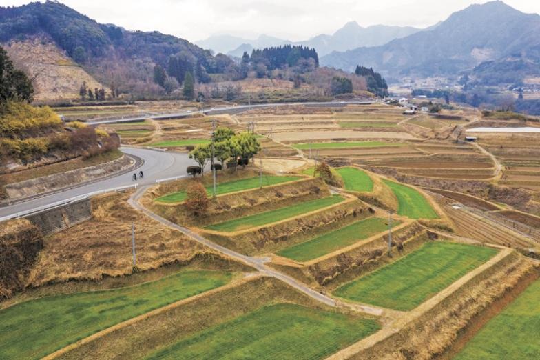 棚田●天岩戸神社へ向かう県道7号線の東側一帯に広がる棚田の風景は圧巻。農林水産省の「日本の棚田100選」にも選ばれている