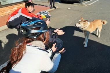 皆で放し飼いされていた犬を可愛がる。同世代ならではのノリの良さがある Photo:大宅陽子