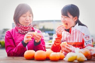 数種類の柑橘を購入し、お楽しみの利き柑橘会を開催