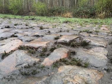 馬車やトラックに踏みしだかれて不規則に丸みのついた石畳が2.4kmも続くアレンベルグ。とくに雨に濡れるとつるつるで歩くことすら難しい