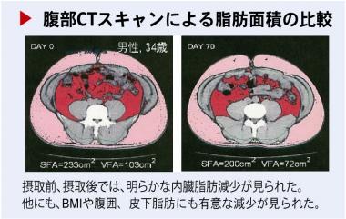 腹部CTスキャンによる脂肪面積の比較(原料メーカー調べ)